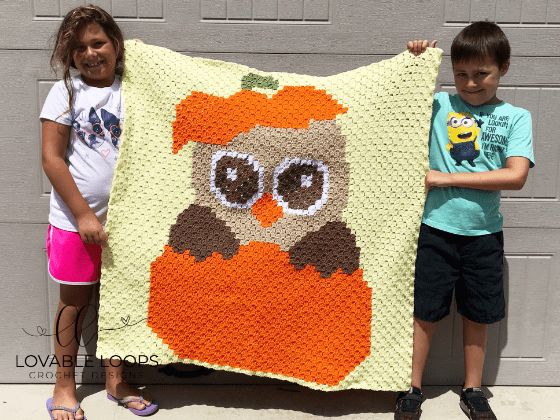 crochet fall owl c2c blanket pattern