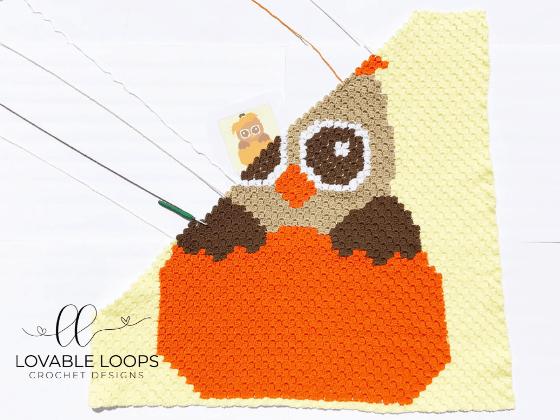 crochet fall owl c2c blanket pattern