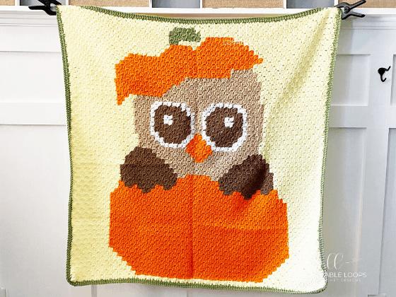 Owl Blanket c2c Crochet Pattern Free